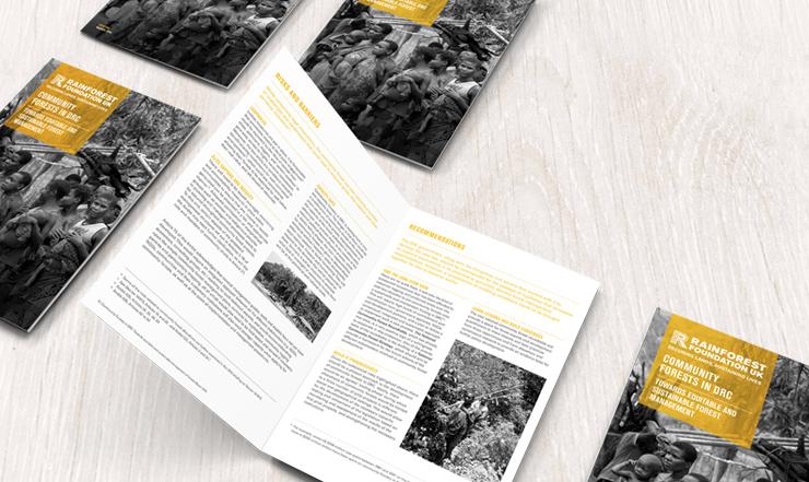 rainforest-brochure-1